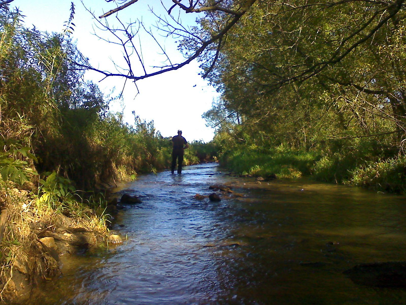 Richland county fishing seeking trout for Willow creek fishing