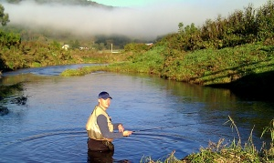 Tom Anderson-Brown Trout Fishing Coon Creek, Vernon County, Wisconsin