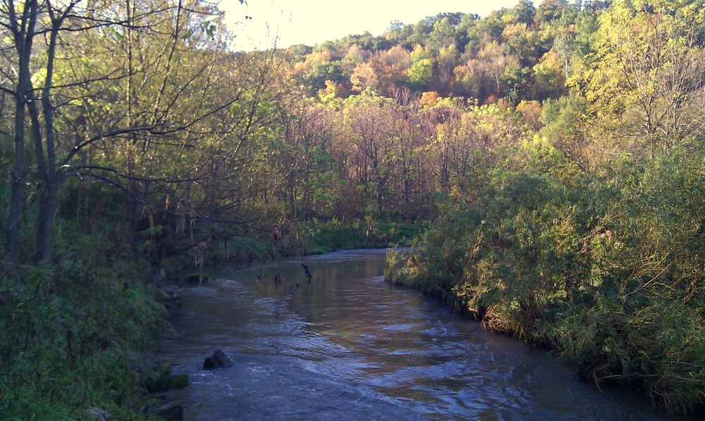 Beautiful Coon Creek in Vernon County, Wisconsin