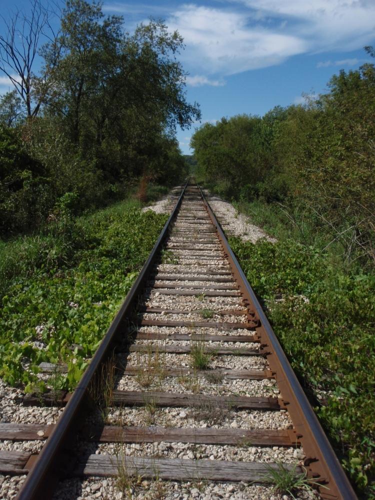 Tracks along Hwy 14 upstream of Cross Plains