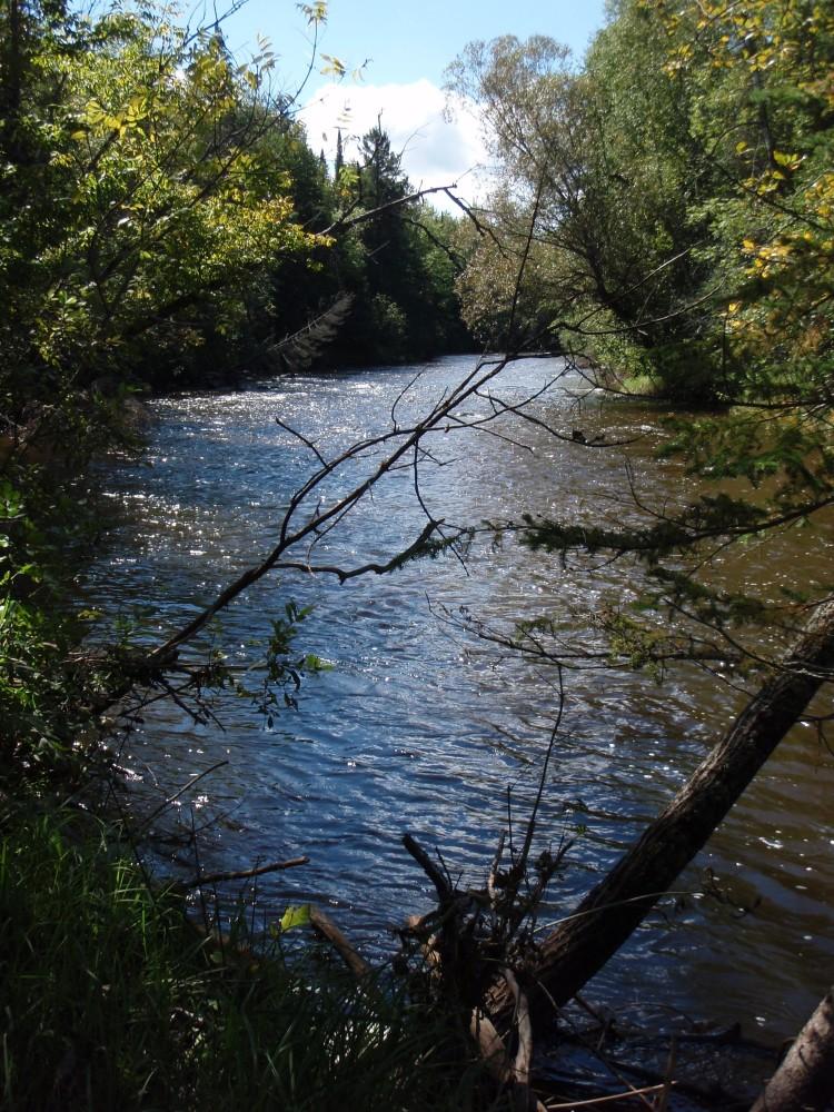 The Brule River: Ain't she pretty!