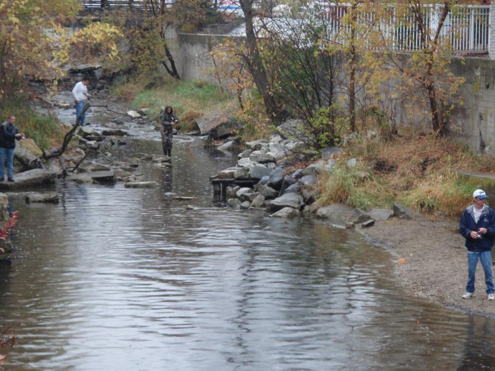 Sauk Creek, Port Washington, WI