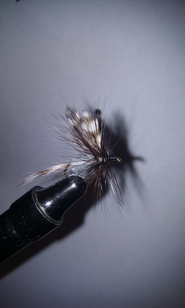 Dark Adams Fly