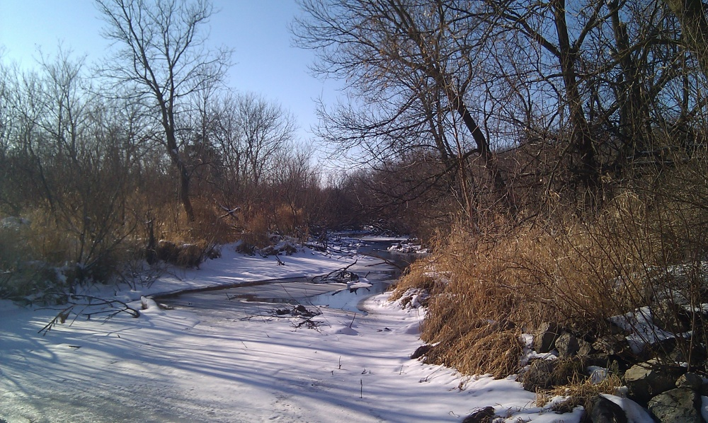 Sixmile Creek, December 10, 2010