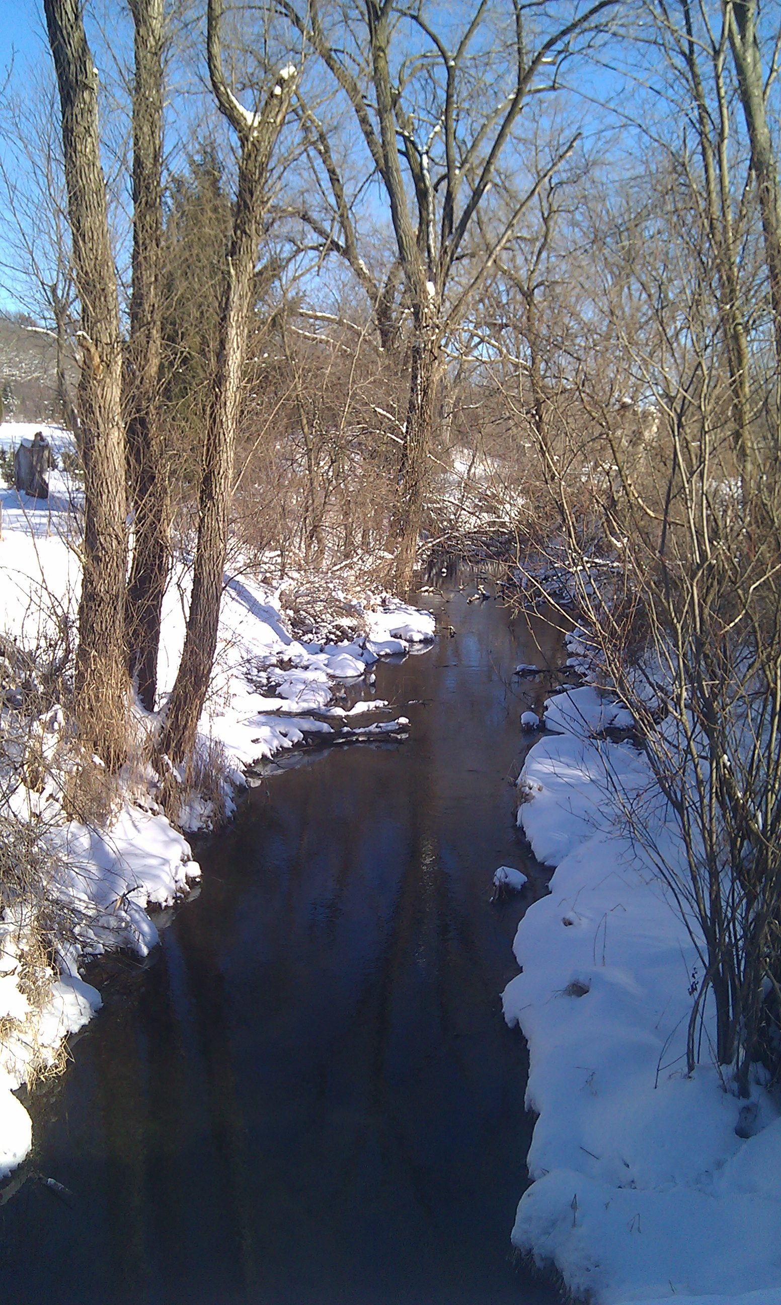 Walking By Wingra Creek In Snow >> Winter Seeking Trout Page 5
