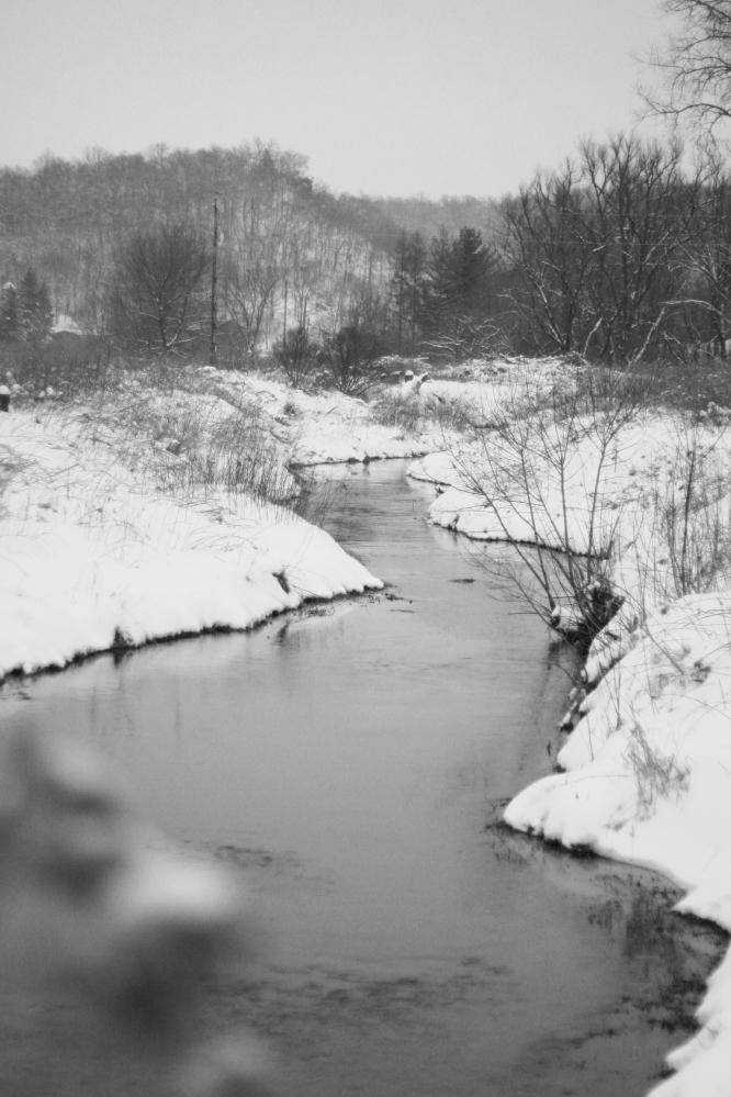Trout Creek, Iowa County, Wisc.