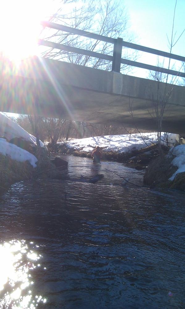 Upper reaches of Gordon Creek