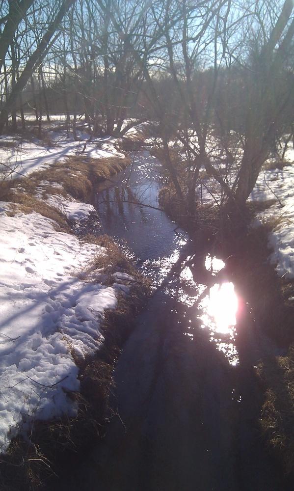 Afternoon sun on Gordon Creek