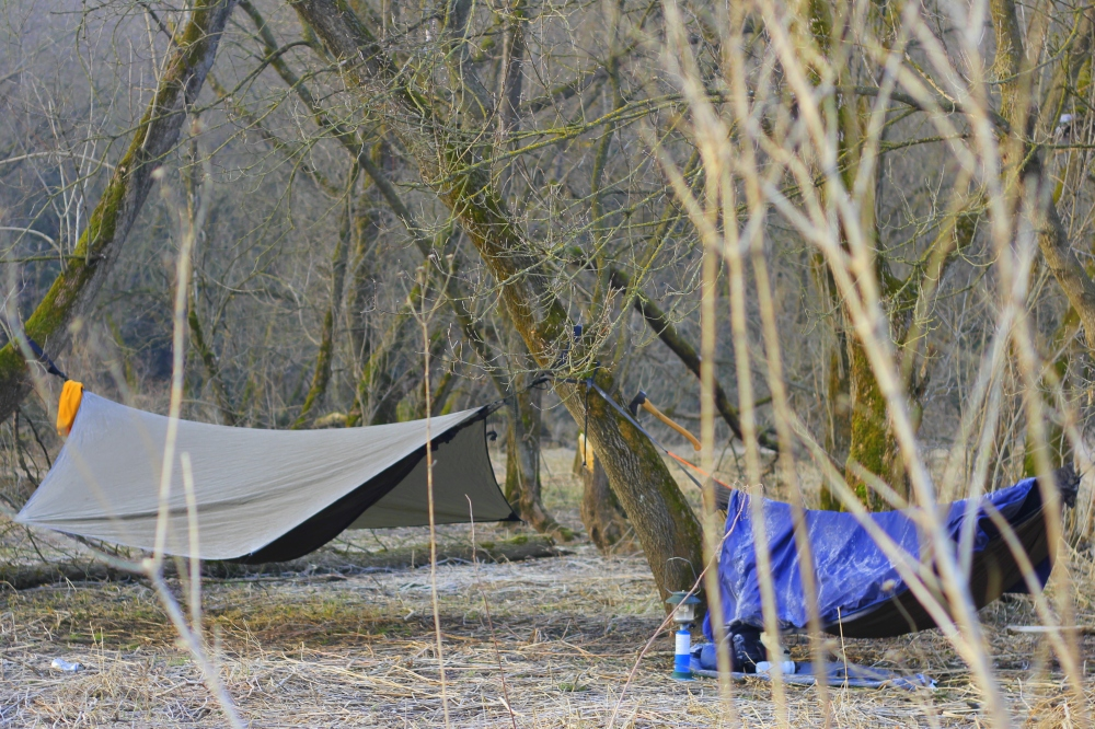 Last Night's Hammocks in the Kickapoo Valley Reserve