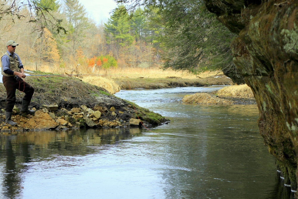 Driftless Trout Stream