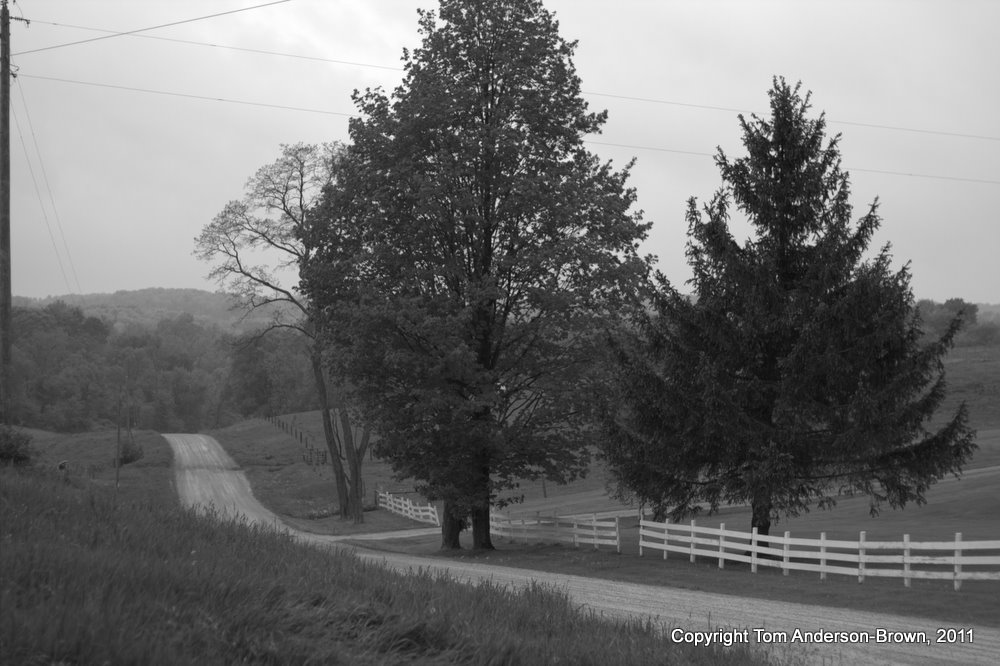 A dirt road in the Driftless