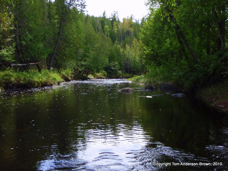 The Amnicon River in Douglas County, Wisconsin