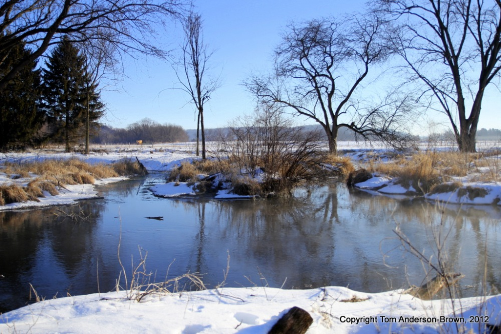 A confluence of spring-fed creeks, Driftless, Wisconsin