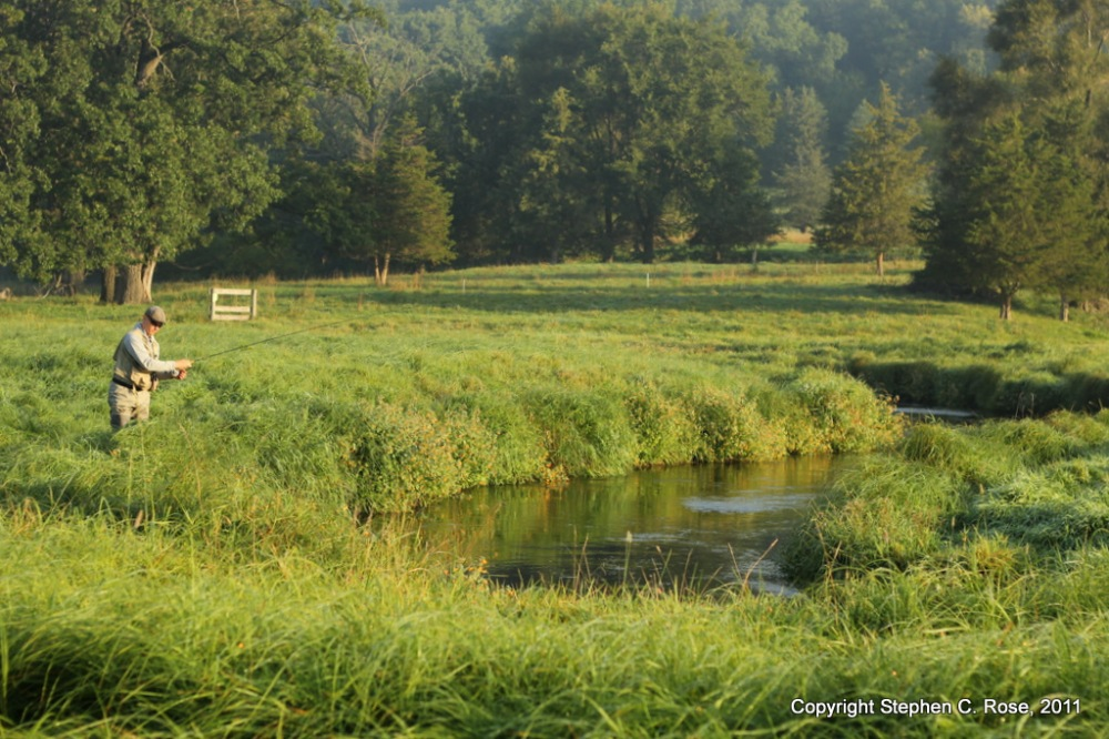 A rolling stone gathers no moss. Seeking trout in the Driftless, Wisconsin