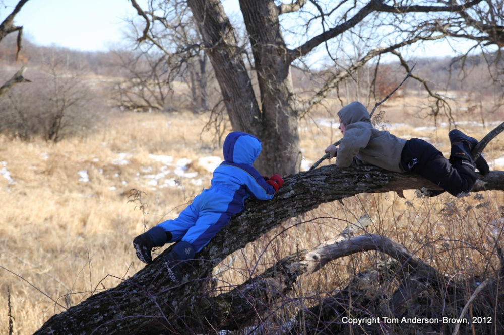 Shep and Joe at Donald County Park, Dane County, Wisconsin