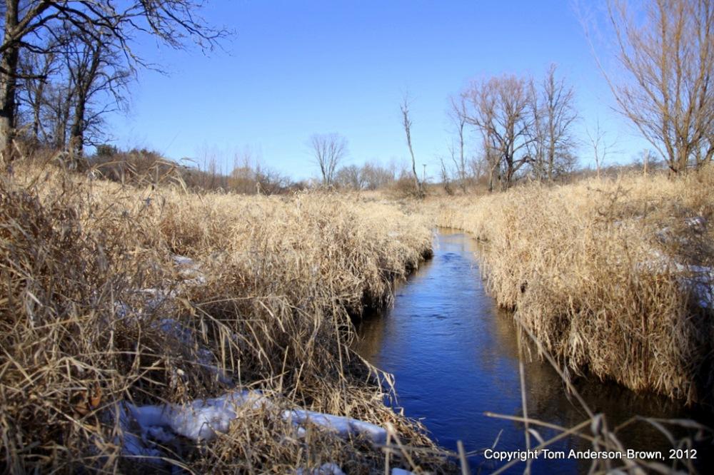 Frye's Feeder runs through Donald County Park, Dane County, Wisconsin