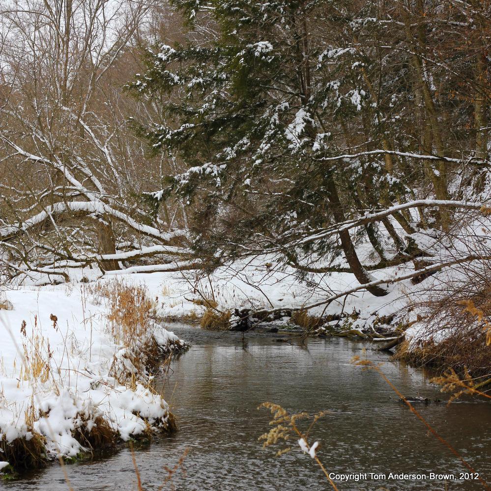 Conley-Lewis Creek, Iowa County, Wisconsin