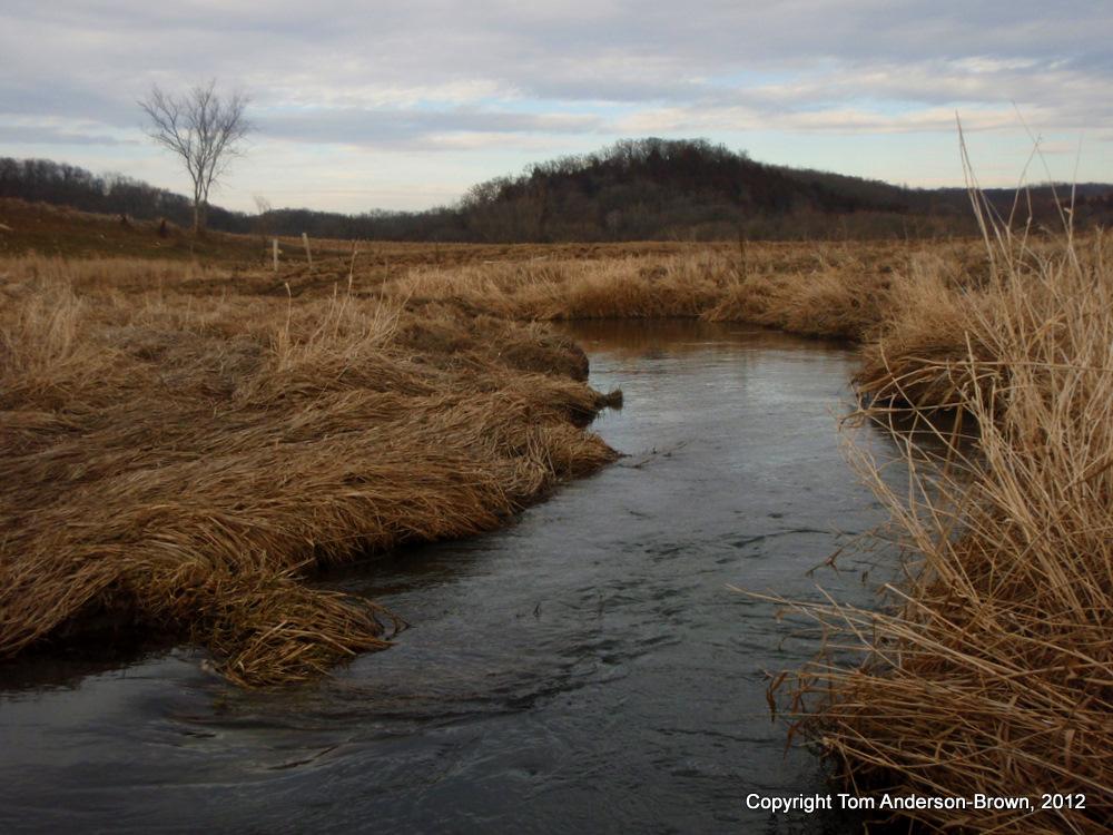 Blue Mounds Creek, West Branch. Dane County, Wisconsin