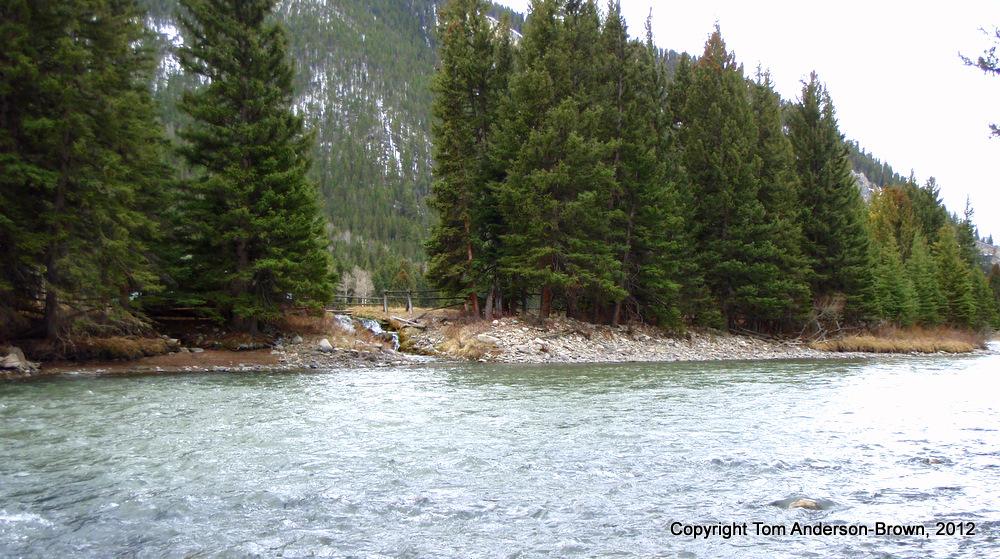 A pretty feeder creek on the Gallatin River, Montana