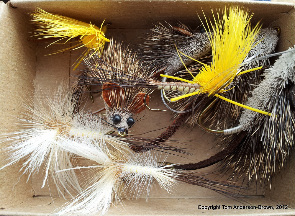 Hexagenia Limbata and Mouse flies