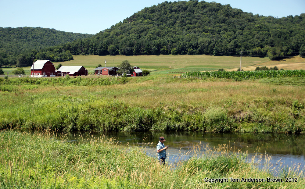Coon creek seeking trout for Trout fishing wisconsin