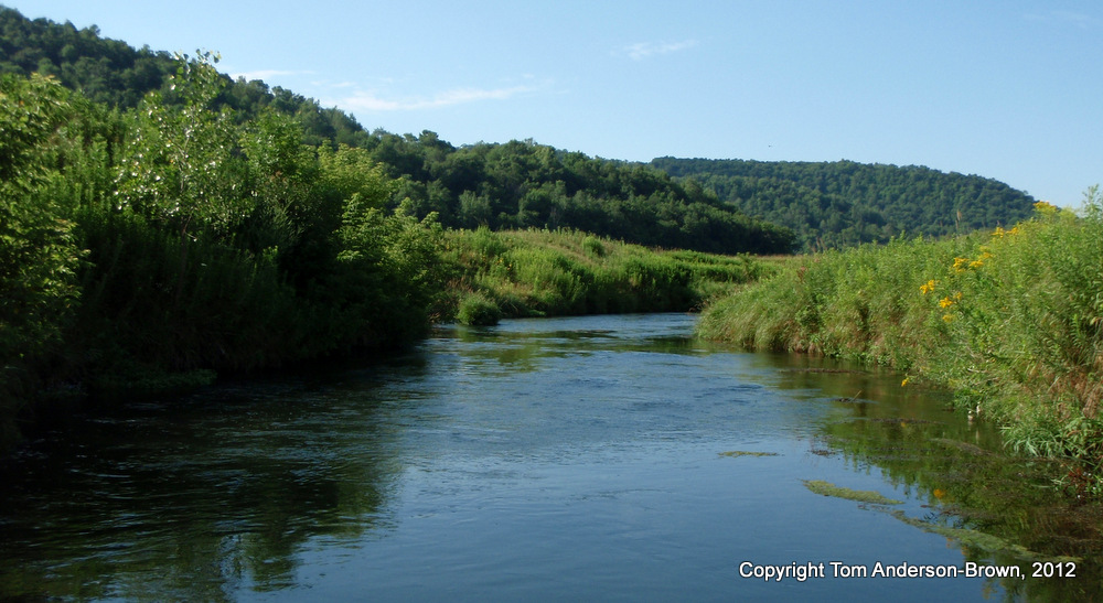Coon Creek in Vernon County, Wisconsin