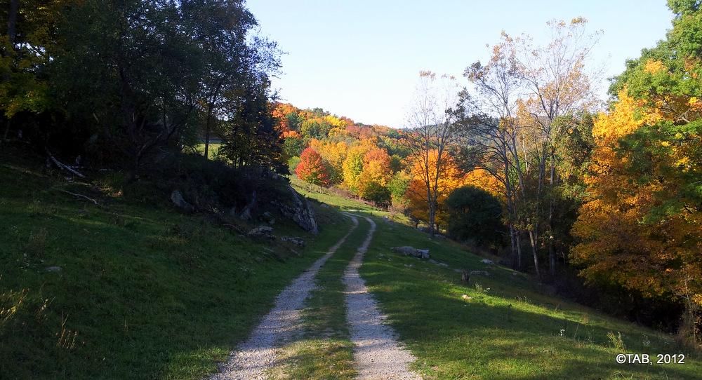 Driftless farm track