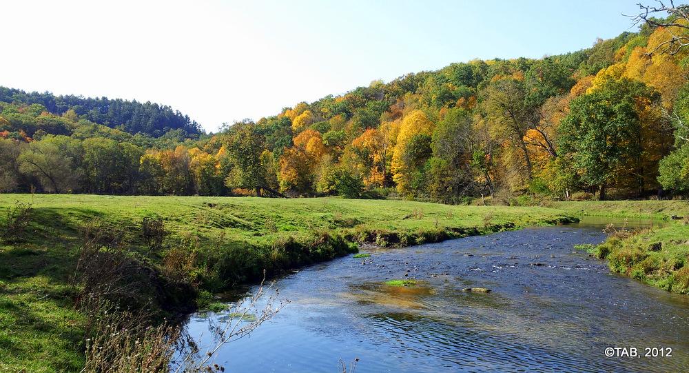 A Driftless Trout Stream, September 28, 2012