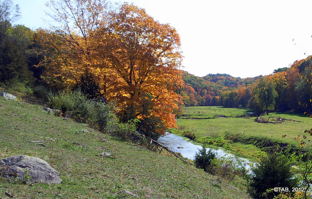 A Driftless Trout Stream, September 28, 2012