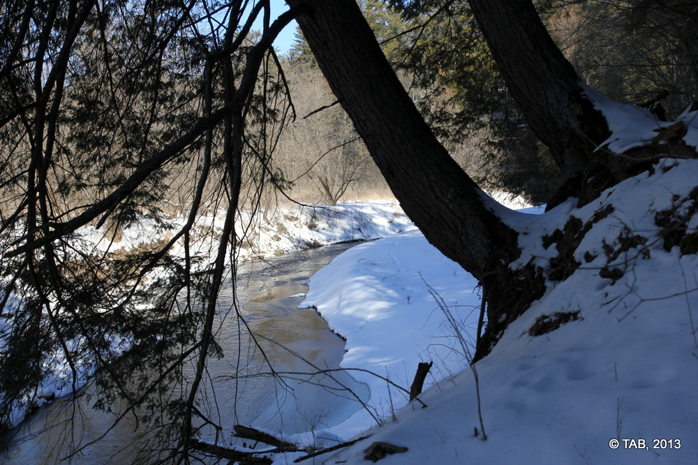 March 2, 2013 on Billings Creek