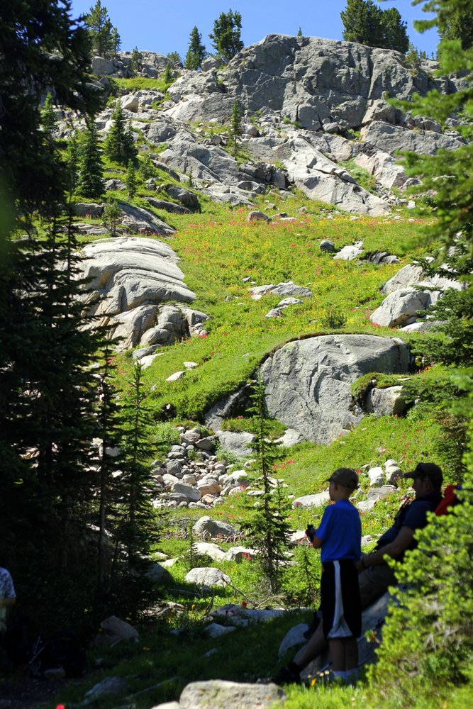 Bode and Stephen admire the high alpine meadows on the East Rosebud Trail