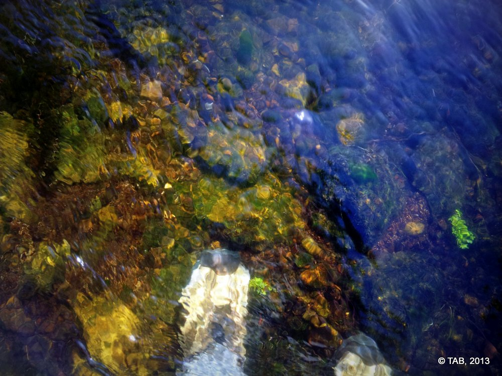 The cool clear water of Black Earth Creek, running over the newly scoured streambed
