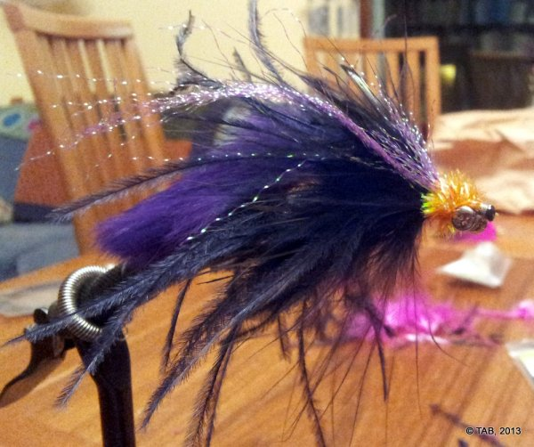 "Tom's ""Patrick Petitjean"" Steelhead Intruder fly (Click image for a special treat)"