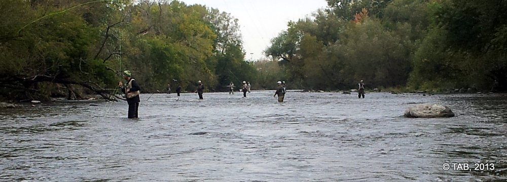 Salmon Fisherman on the Milwaukee River