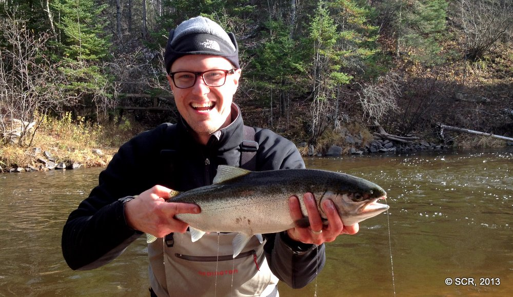 A Beautiful wild female Brule River Steelhead